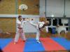 A martial arts exhibition in Tamworth with a man exhibiting a high Taekwondo kick.